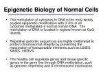 epigenetic biology of normal cells