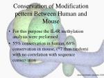 conservation of modification pettern between human and mouse
