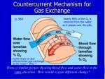 countercurrent mechanism for gas exchange