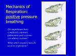 mechanics of respiration positive pressure breathing