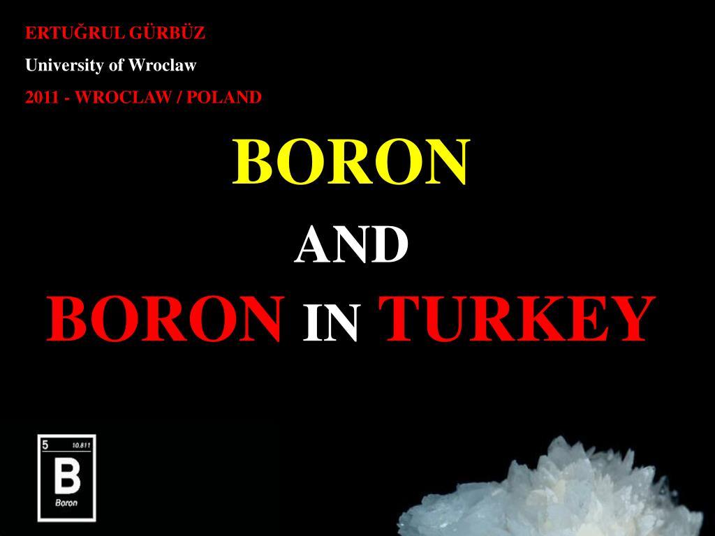 boron a nd boron in turkey l.