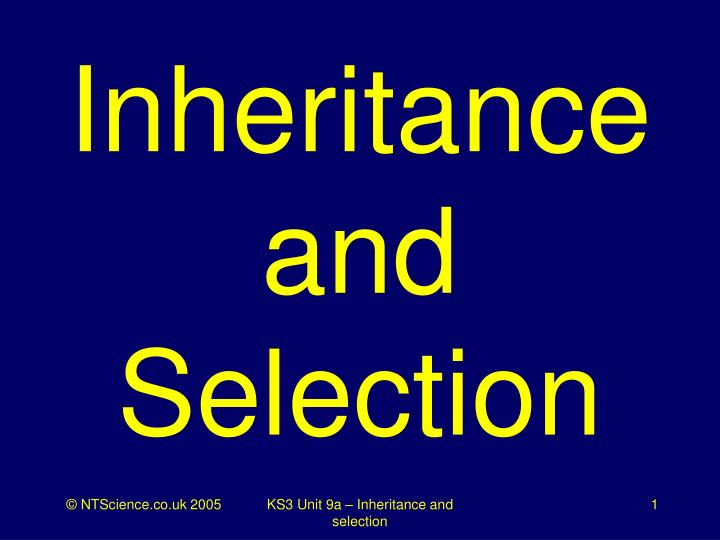 inheritance and selection n.