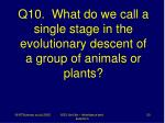 q10 what do we call a single stage in the evolutionary descent of a group of animals or plants
