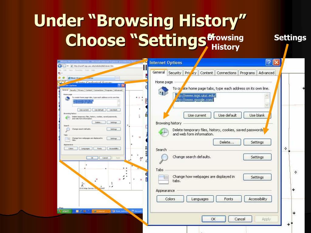 "Under ""Browsing History"" Choose ""Settings"""