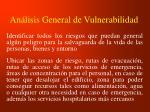 an lisis general de vulnerabilidad1