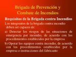 brigada de prevenci n y combate de incendios
