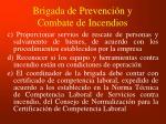 brigada de prevenci n y combate de incendios1
