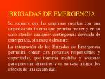 brigadas de emergencia1
