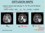 diffusion maps