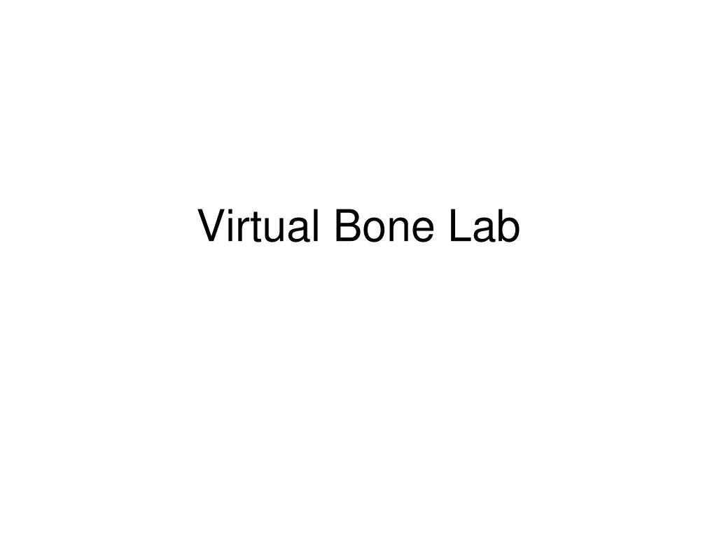 virtual bone lab l.