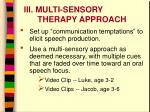 iii multi sensory therapy approach