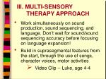 iii multi sensory therapy approach1