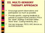 iii multi sensory therapy approach2