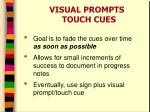 visual prompts touch cues1