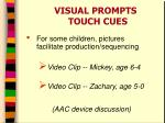 visual prompts touch cues2