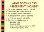 what does my cas assessment include