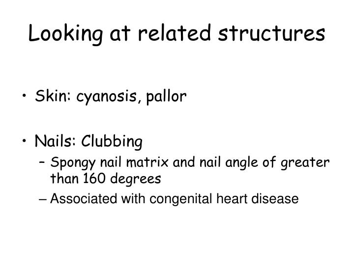 Looking at related structures