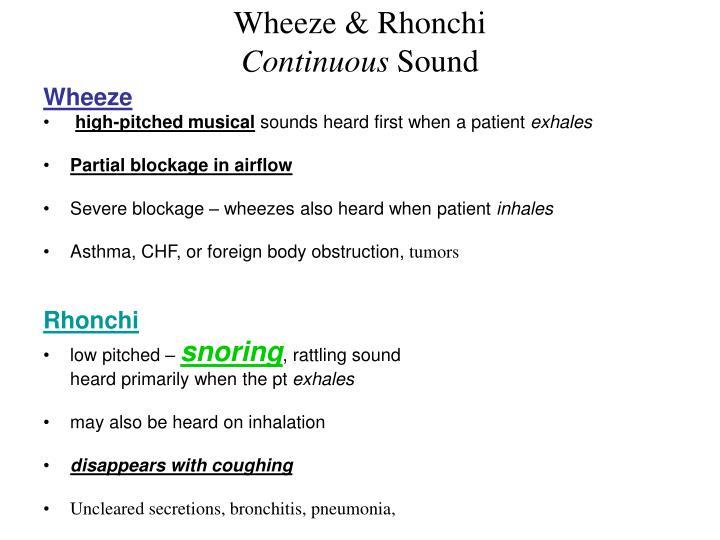 Wheeze & Rhonchi