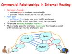 commercial relationships in internet routing