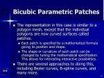 bicubic parametric patches