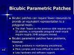 bicubic parametric patches42