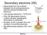 secondary electrons se