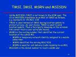 tmsi imsi msrn and msisdn