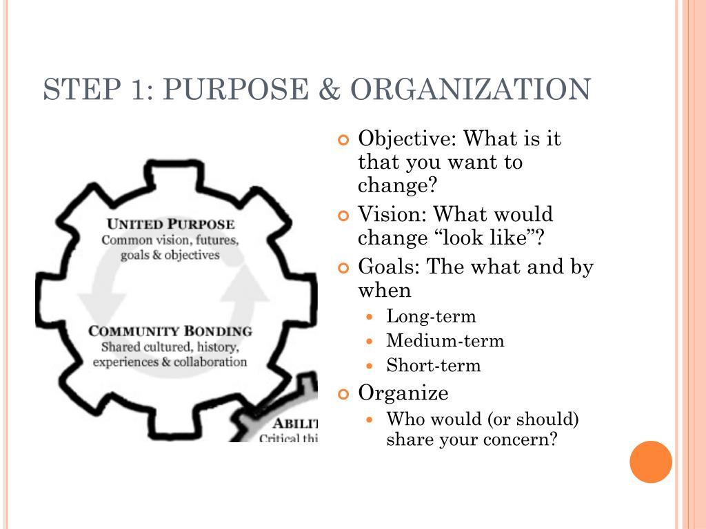 STEP 1: PURPOSE & ORGANIZATION