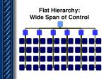 flat hierarchy wide span of control