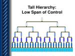 tall hierarchy low span of control