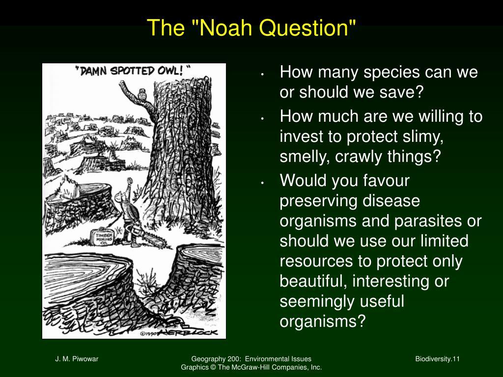 """The """"Noah Question"""""""