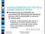 characteristics of youth other service needs23