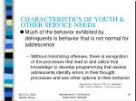characteristics of youth other service needs24