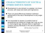 characteristics of youth other service needs27