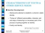 characteristics of youth other service needs32