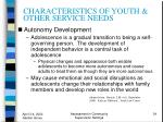 characteristics of youth other service needs34