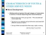 characteristics of youth other service needs35