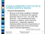 characteristics of youth other service needs41