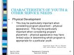 characteristics of youth other service needs42