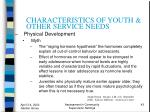 characteristics of youth other service needs43
