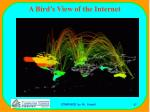 a bird s view of the internet47