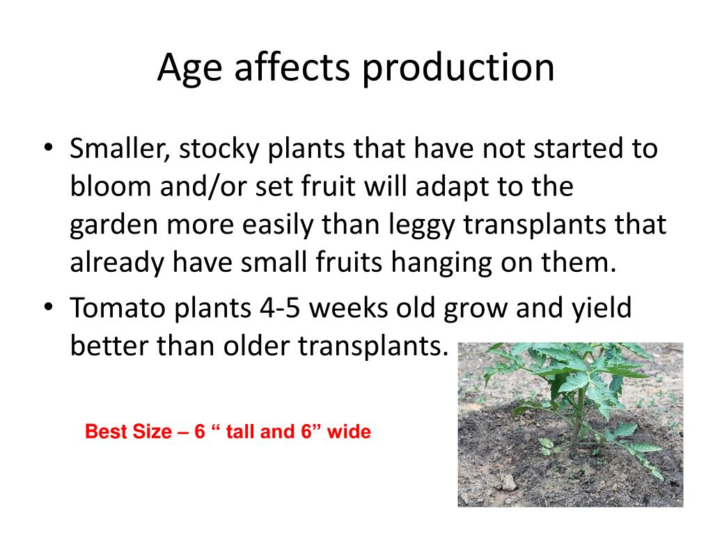 Age affects production
