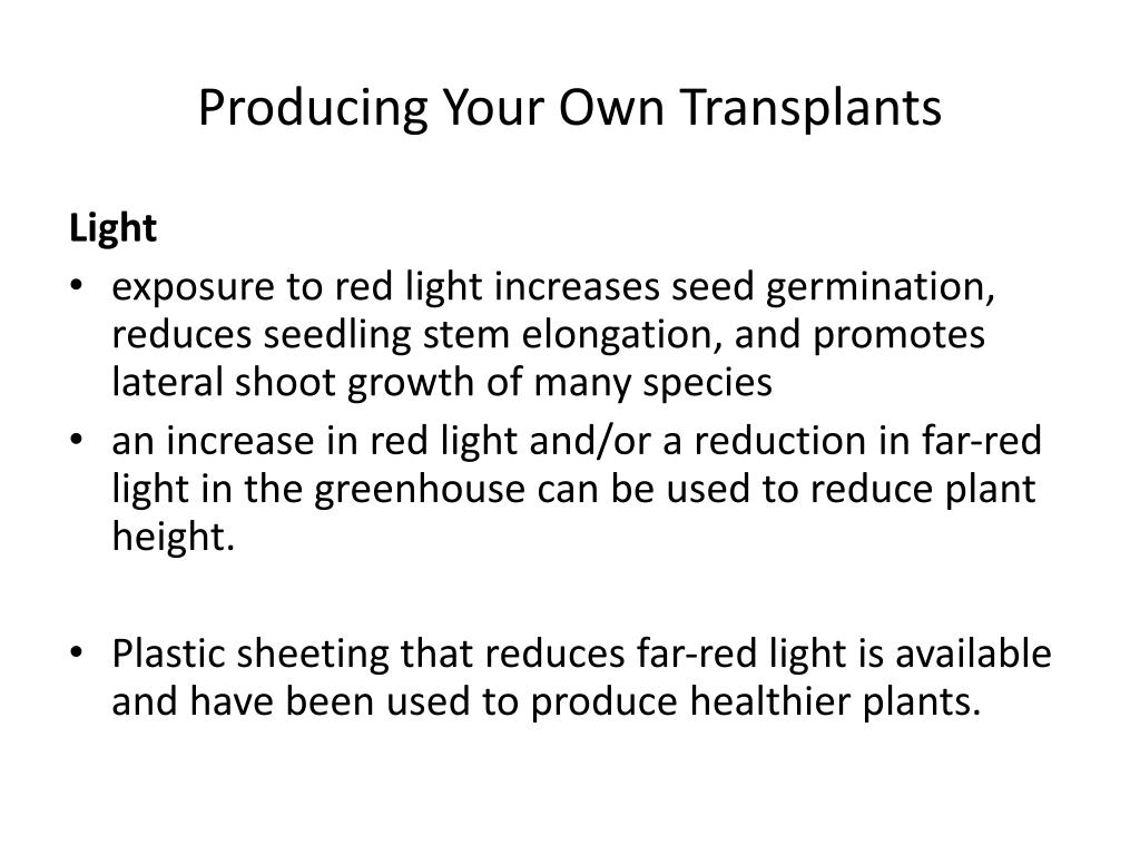 Producing Your Own Transplants