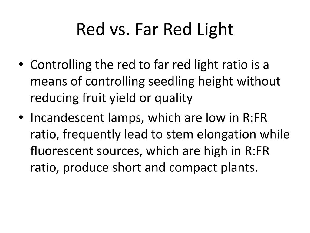 Red vs. Far Red Light