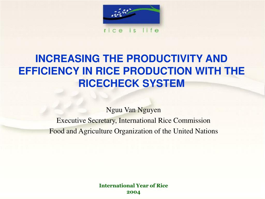 increasing the productivity and efficiency in rice production with the ricecheck system l.