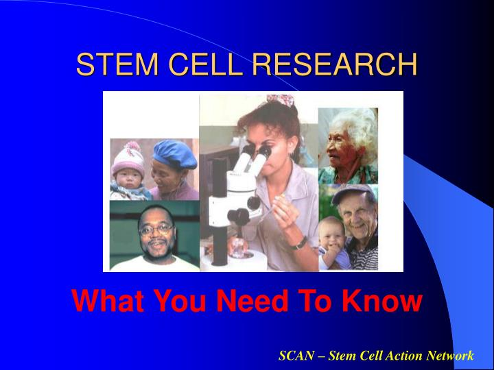 stem cell research n.