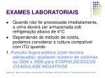 exames laboratoriais12