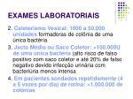 exames laboratoriais13