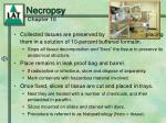 necropsy