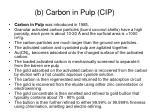 b carbon in pulp cip